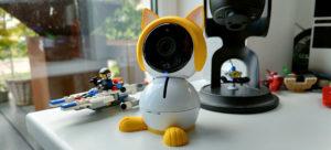 Arlo Kitten Character